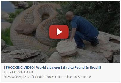 Shocking Video Worlds Largest Snake Found In Brazil Facebook Scam