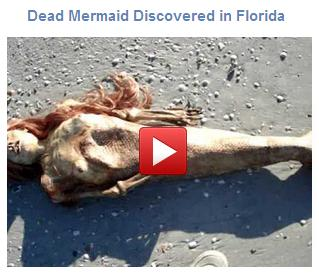A Dead Mermaid Found Washed Up on the Shores of Gators - Facebook Like Scam
