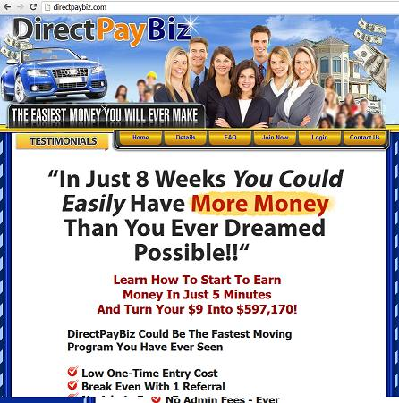 The Website directpaybiz.com - Direct Pay Business (DPB)