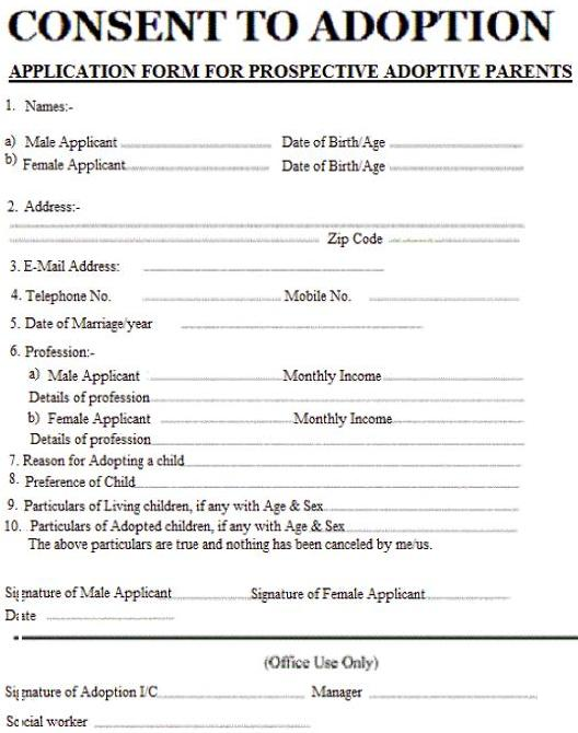 Fake Baby Adoption Consent Application Form