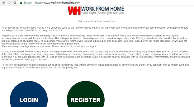 """Work From Home Data"" at workfromhomedata.com"