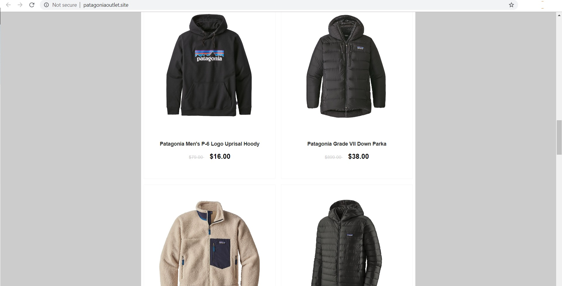 Patagonia Outlet Site Scam - patagoniaoutlet.site