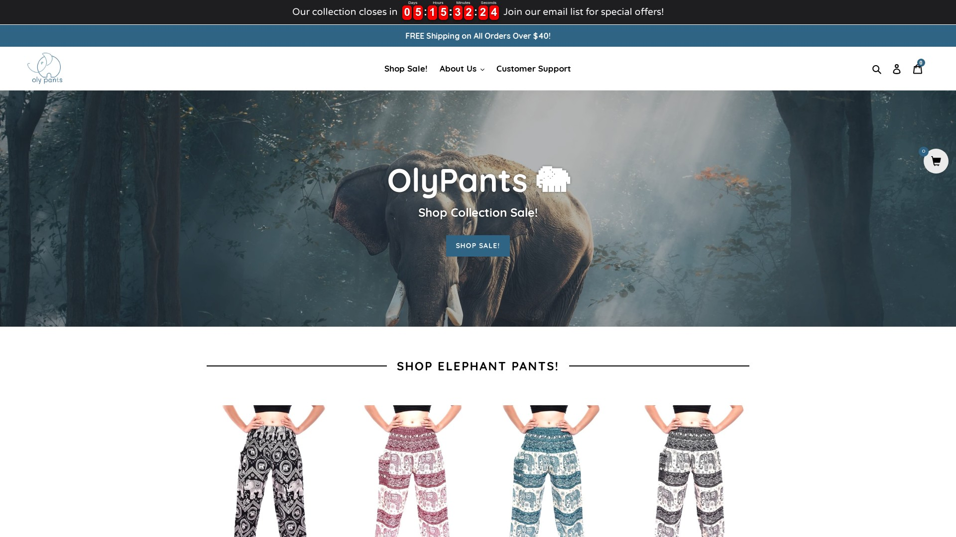 Is Oly Pant a Scam  Review of the Online Store